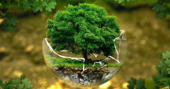 impact des vetements sur l'environnment